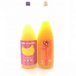 梅酒  完熟マンゴ-梅酒フルフル